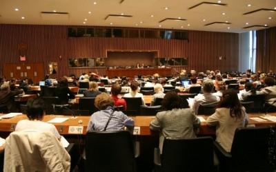 Informacija Bosne i Hercegovine UN CEDAW Komitetu