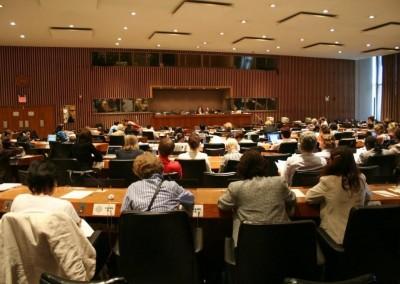 Odluke CEDAW komiteta