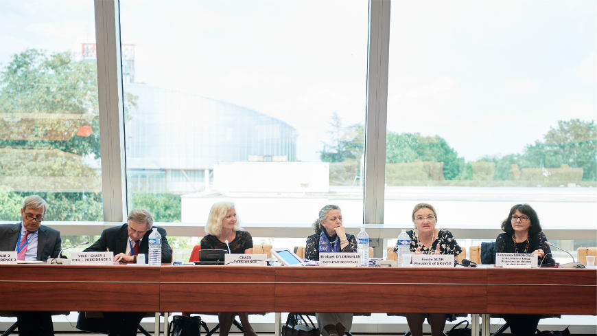 Sastanak Komiteta Konvencije Vijeća Evrope o borbi protiv nasilja nad ženama i nasilja u porodici ( Istanbulska konvencija)
