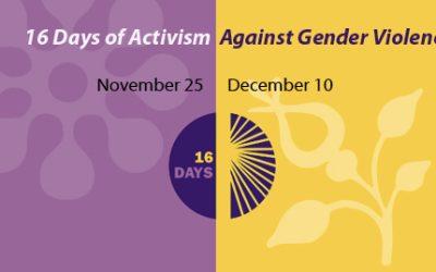 Saopštenje povodom početka Kampanje 16 dana aktivizma protiv nasilja na osnovu pola